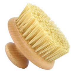 body shop dry brush
